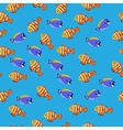 Powder Blue Tang fish vector image