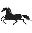 galloping horse vector image