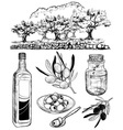 Hand Drawn Set of Olive Products vector image