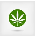 marijuana leaf in green circle logo symbol vector image