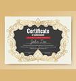 vintage elegant certificate of achievement vector image