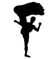 Karate kick vector image vector image