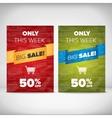 Big Sale flyer template vector image