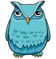 owl bird cartoon character vector image