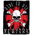 skull tee graphic design vector image