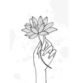 hand holding lotus flower contour hand drawn vector image