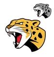 Leopard or jaguar head with bared teeth vector image