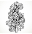 Graphically drawing black ink tree isolated on vector image