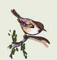 drawing of the bird vector image