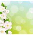 Pastel Apple Tree Flowers Frame vector image vector image