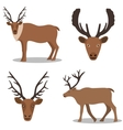 Deer and their head vector image
