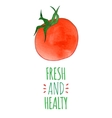 Fresh and healty tomato vector image