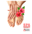 Pedicure Manicure Spa Salon Poster vector image