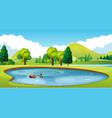 scene with pond in the field vector image
