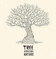 amazing tree vector image
