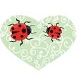 Ladybird on the green grass vector image