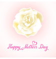 Happy Mothers Day Beautiful Blooming whire Rose vector image