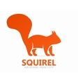 squirrel logo or icon vector image