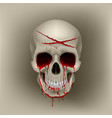 bloody skull vector image