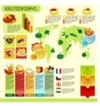 World Food Infographics vector image