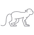 monkey line icon sign on vector image