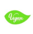 Vegan hand written lettering on green leaf for vector image