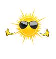 sun with sunglass cartoon art vector image