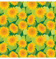 sunflower seamless 2 380 vector image vector image