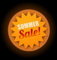 hot summer sale sun sticker symbol sign vector image