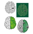 Human brain with computer motherboard vector image