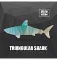 Poly design Shark triangular Shark vector image