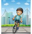 A boy biking in the city vector image