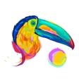 The cute red Bullfinch exotic bird vector image