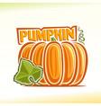 pumpkin still life vector image