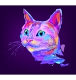 The cute colored cat head vector image