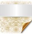 decorative bright background vector image