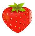 fresh strawberry vector image vector image
