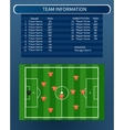 soccer infographic field vector image