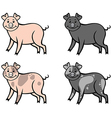 color pig vector image vector image