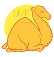 cute cartoon camel dromedary vector image