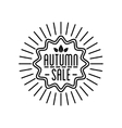 Autumn sale Logotypet Special offer badge vector image