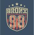 vintage bronx typography vector image