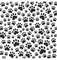 Cat or dog paws background vector image
