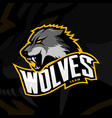 furious wolf sport logo concept isolated on vector image