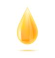 Honey drop vector image