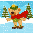 teddy bear on ice skates vector image