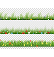 green grass and spring flowers nature border vector image vector image