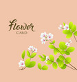 white flower and leave greeting card vector image