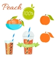Peach fruit and juice set vector image