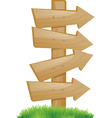 wooden pointer on a green grass vector image vector image